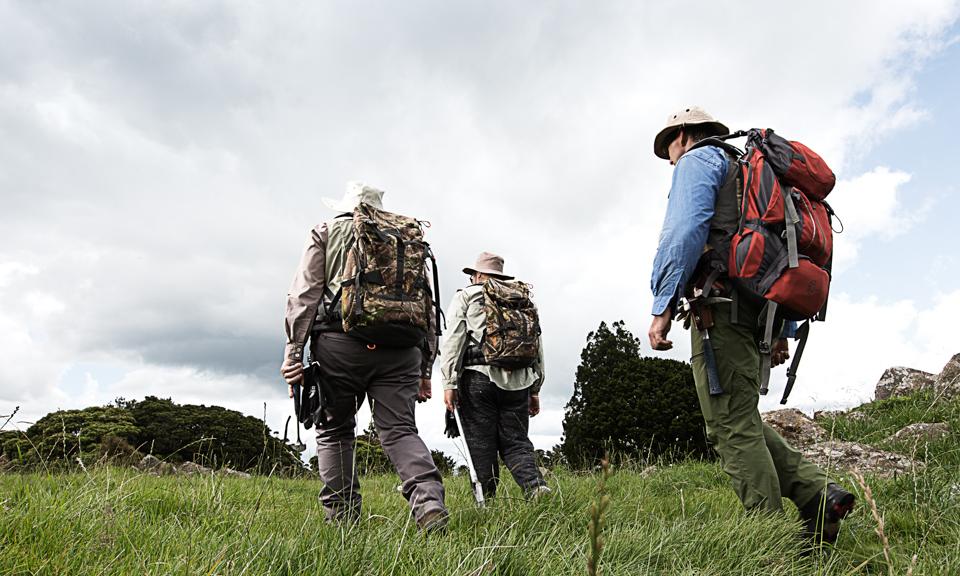 Walkers countryside-