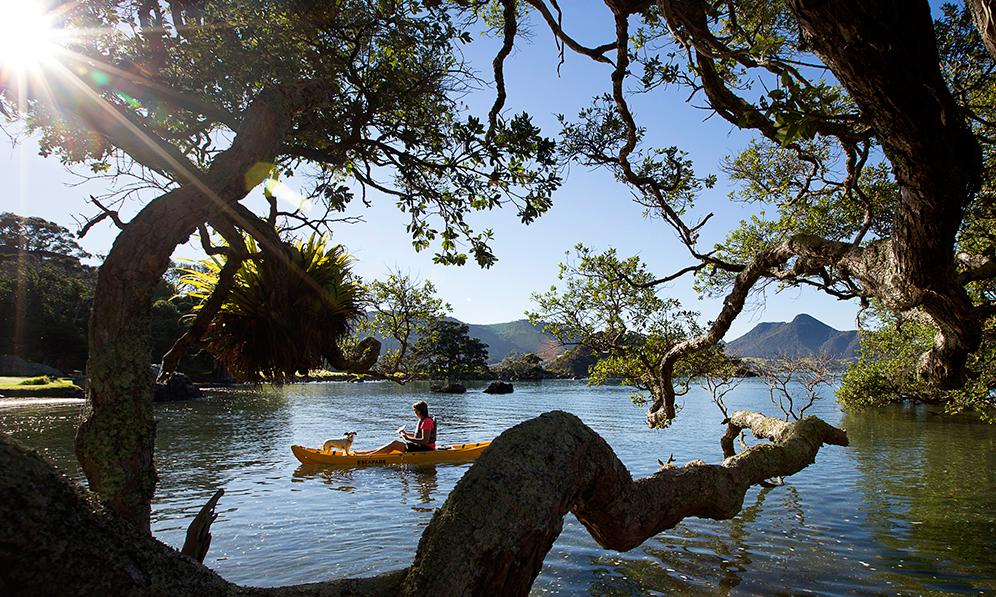 kayaking Whangarei Heads-2715