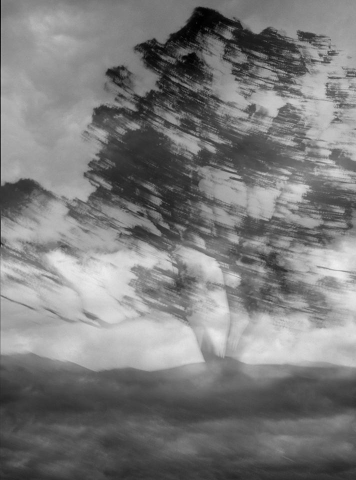 Pohutukawa-Clouds_13_2020