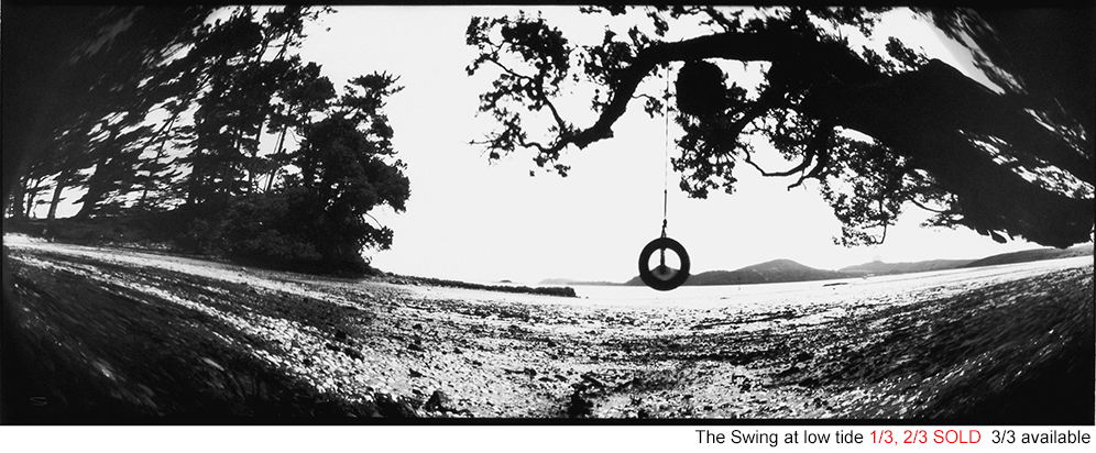 The swing at low tide 0034
