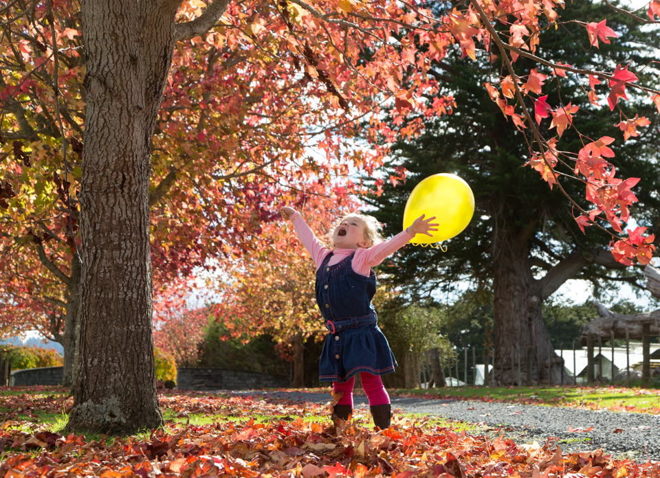 ballon autumn leaves-3504